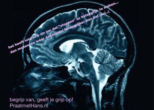 grip op het emtionele brein